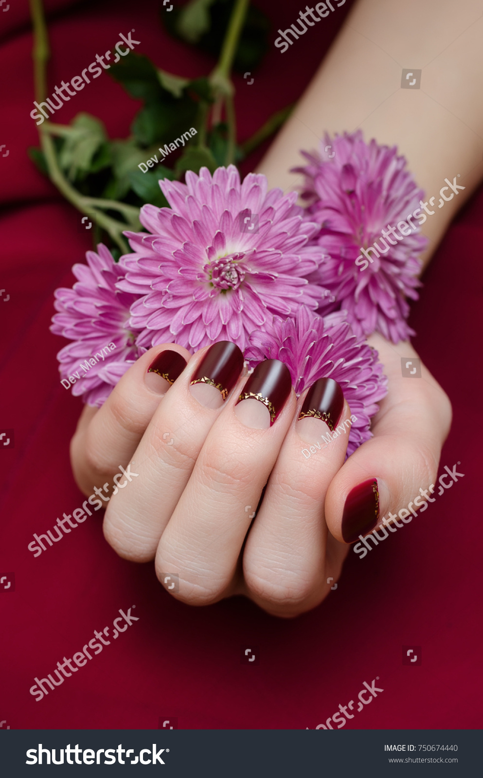 Female Hands Dark Red Nail Design Stock Photo (Royalty Free ...