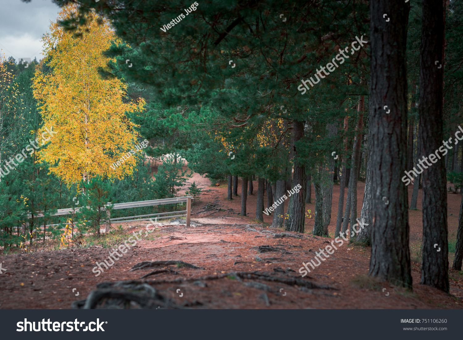 Picturesque View On Valley National Park Stock Photo 751106260 ...