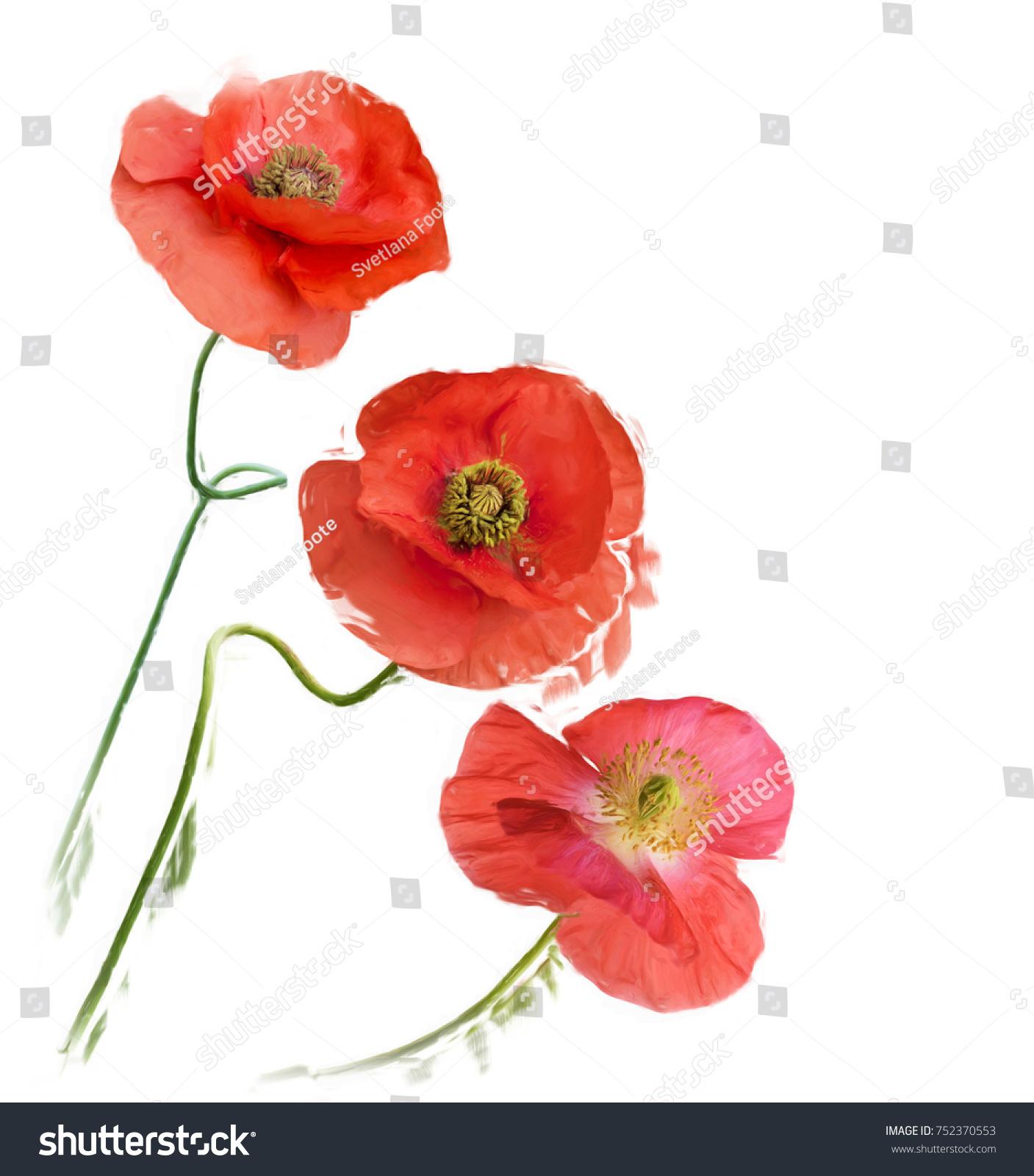 Digital Painting Poppy Flowers Stock Illustration 752370553