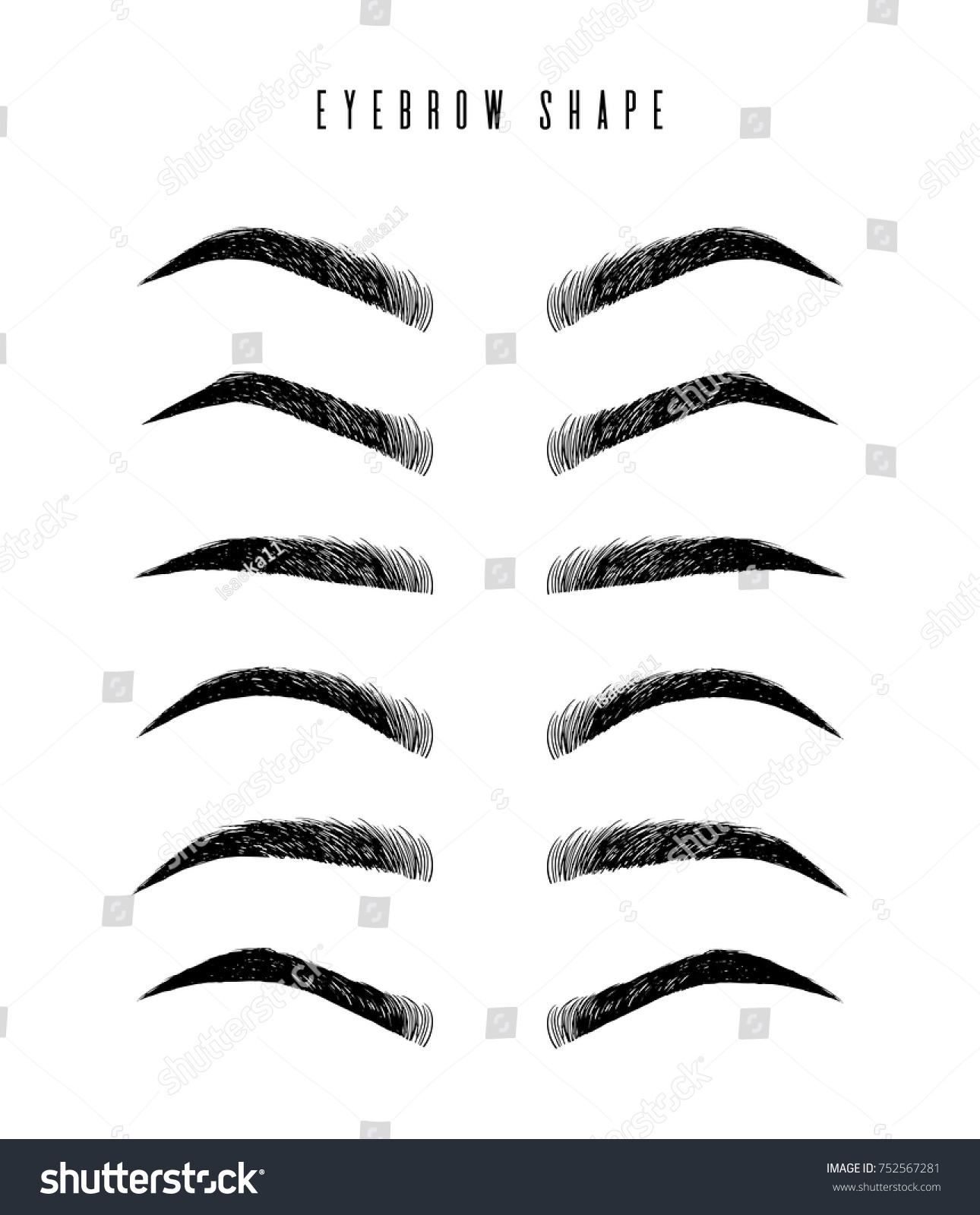 Eyebrow Shapes Various Types Eyebrows Classic Stock Vector Royalty