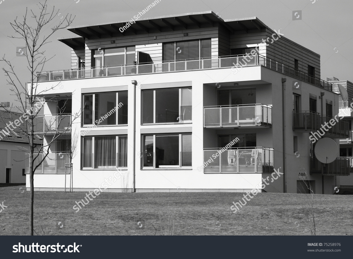 Modern Flat House In Black And White Stock Photo 75258976