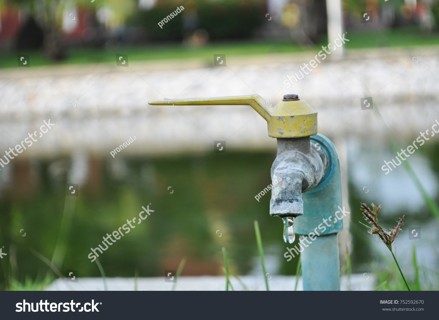 Colorful Garden Faucet Picture Collection - Beautiful Garden ...