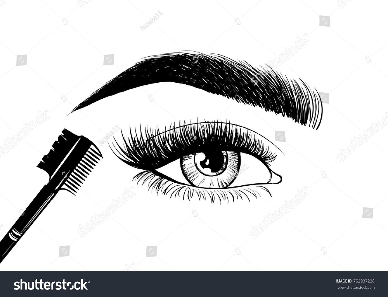 Beautiful Eyes Eyebrows Brush Eyebrows Eyelashes Stock Vektorgrafik