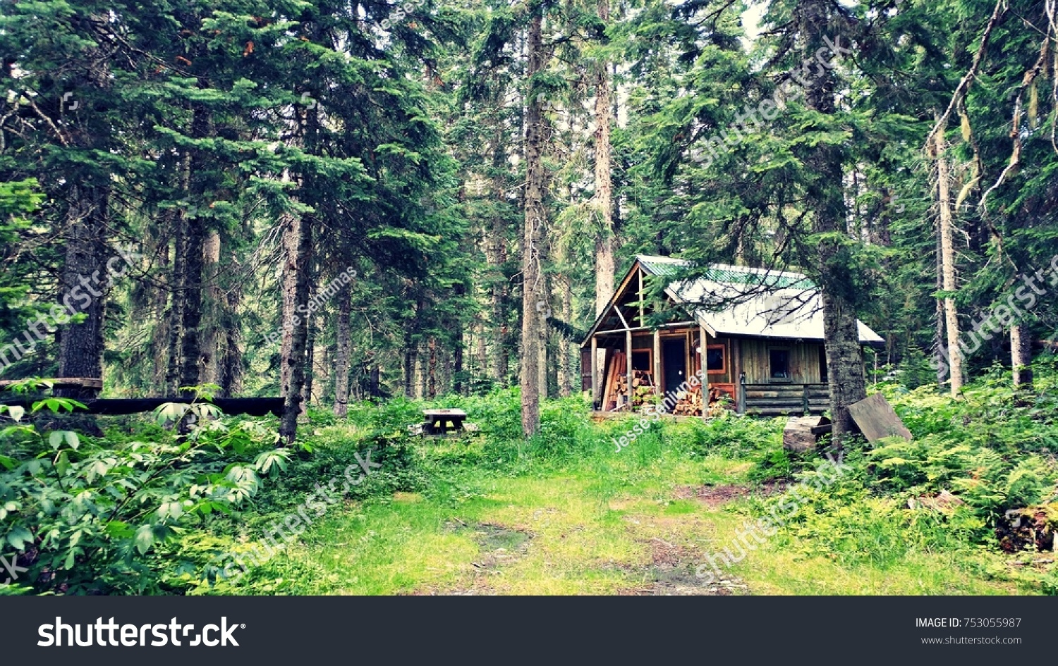 A secluded cabin in the woods. #753055987