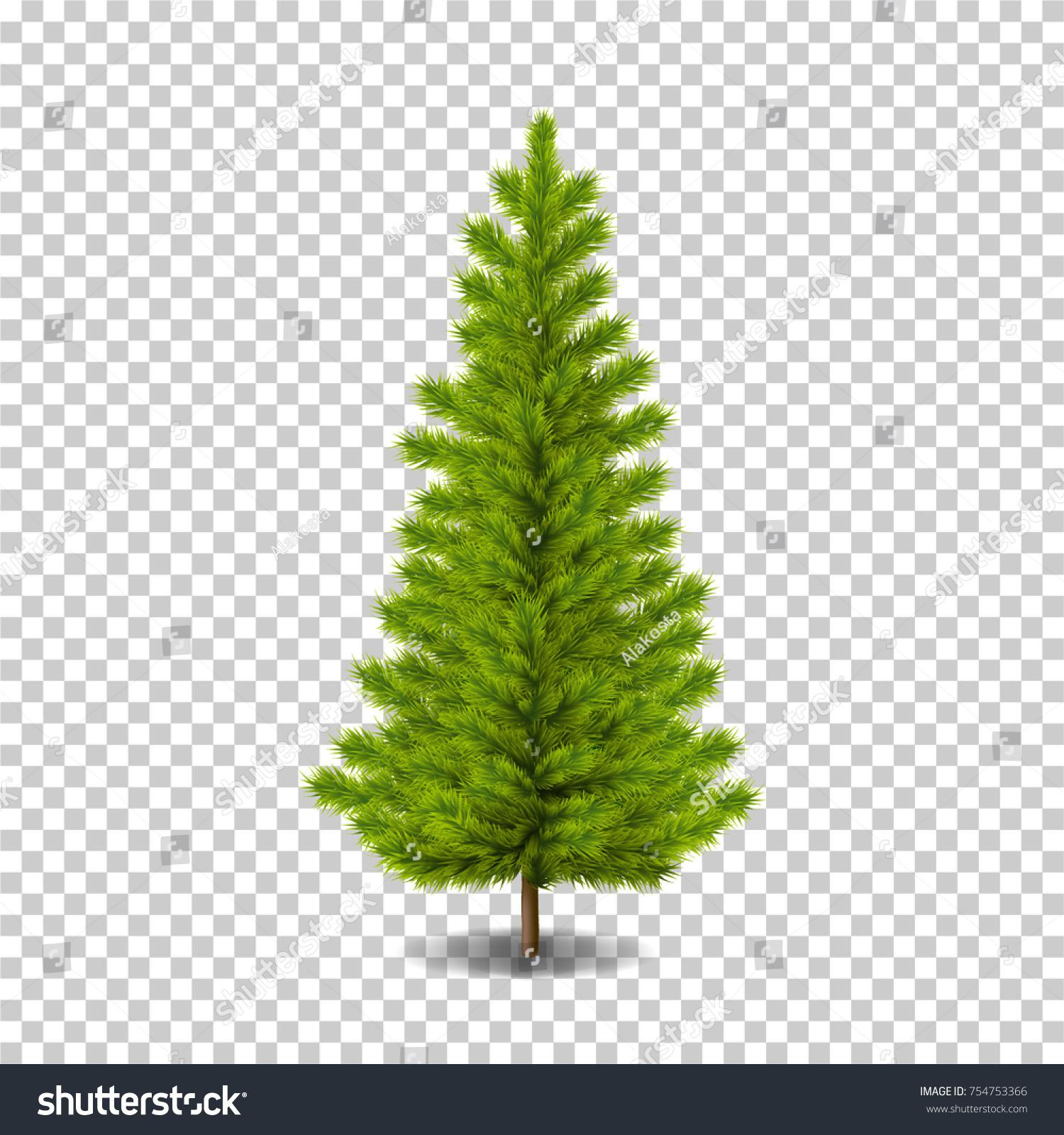 Vector Realistic Christmas Tree Ready Decorating Stock Vector ...