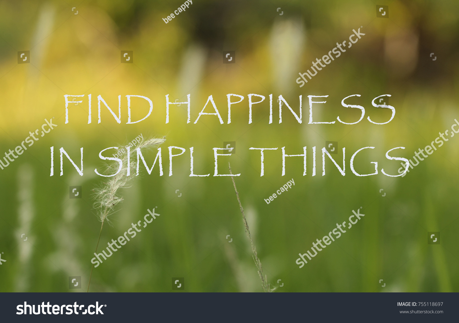 Life Inspirational Quotes Find Happiness Simple Stock Photo Edit