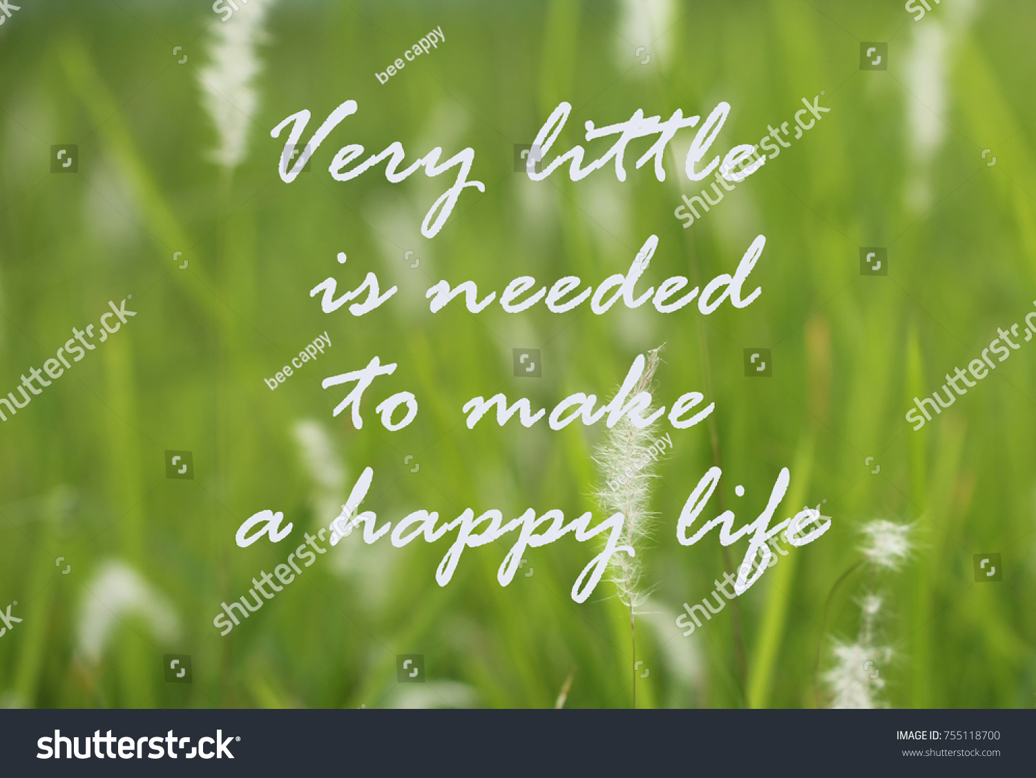Life Inspirational Quotes Very Little Needed Stock Photo Edit Now