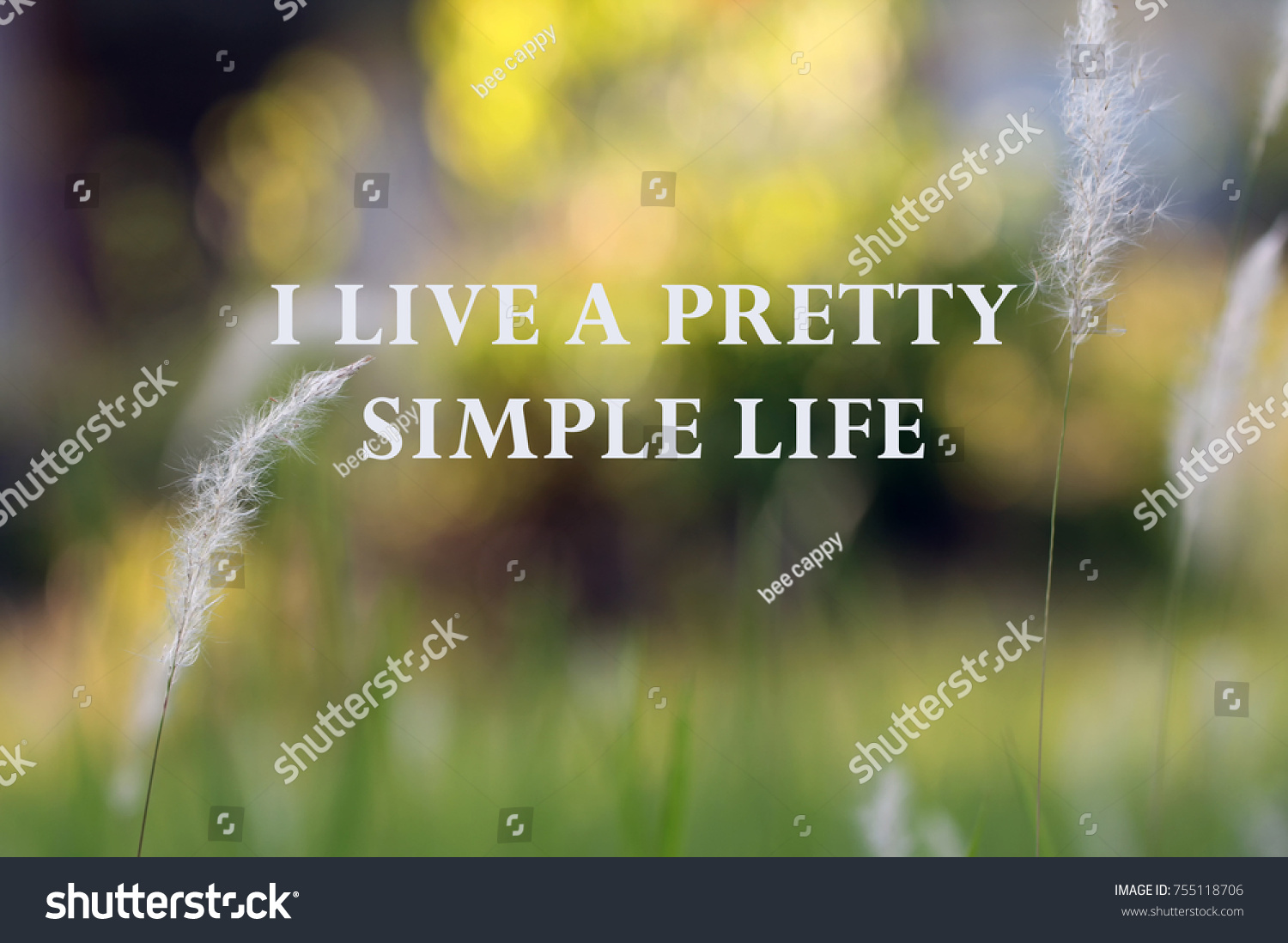 Life Inspirational Quotes I Live Pretty Stock Photo Edit Now