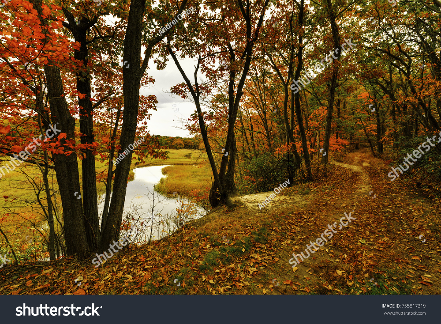 colorful fall scenery ez canvas