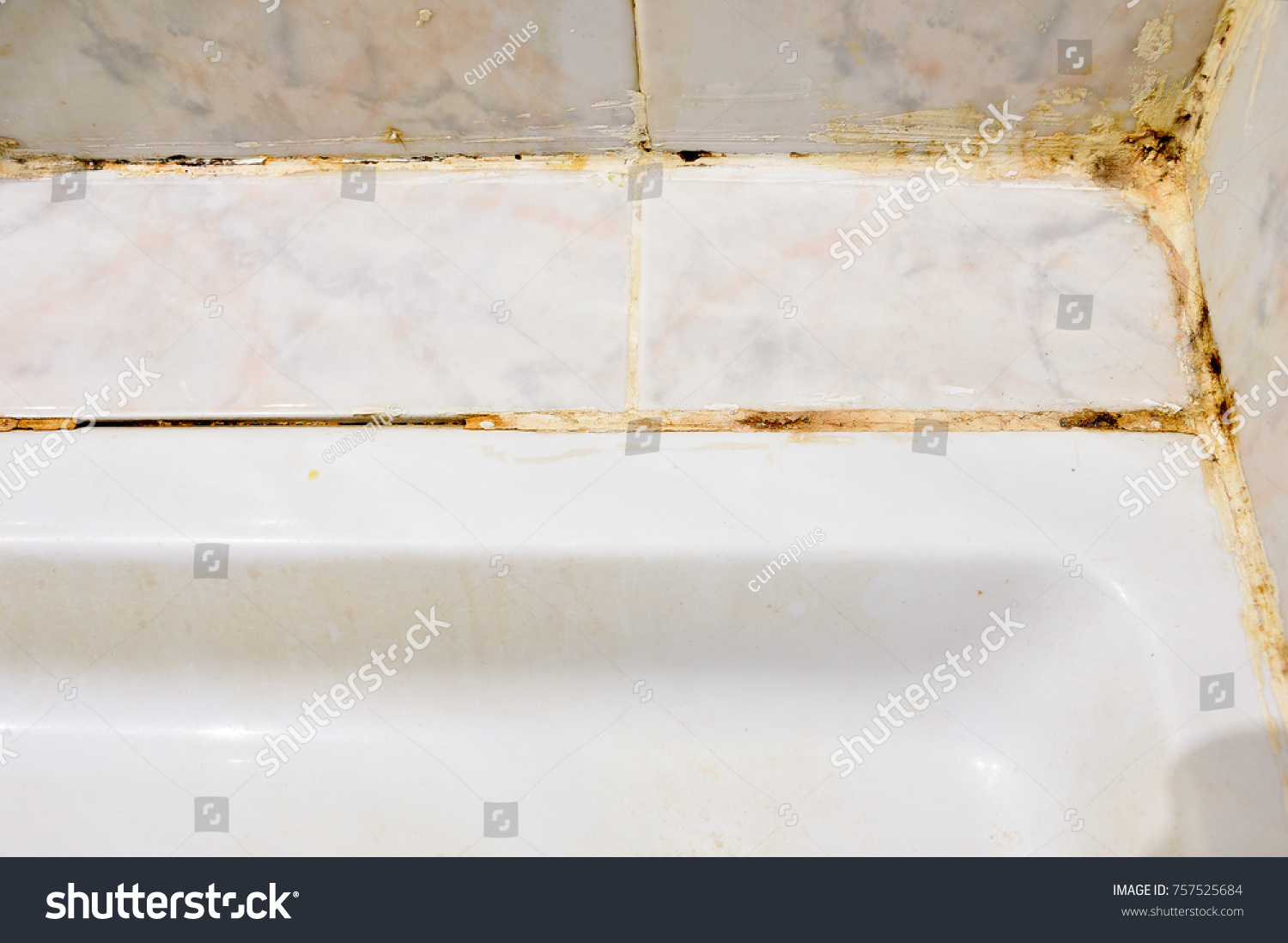 Disgusting Home Shower Bathroom Tile Sealant Stock Photo (Edit Now ...