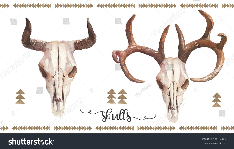 Watercolor Boho Illustration Set Bull Cow Stock Illustration