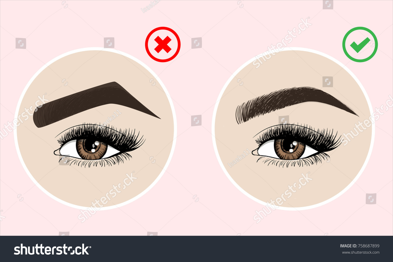Right Wrong Eyebrow Coloring Eyebrows Shapes Stock Vector 758687899 ...
