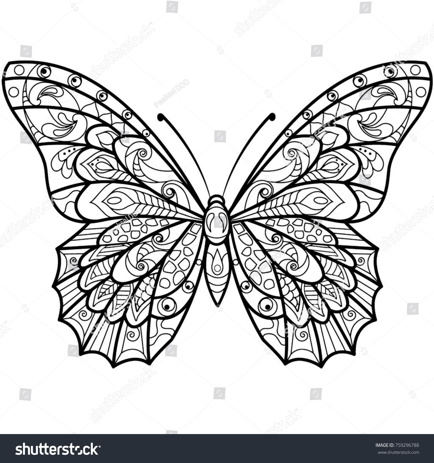 Butterfly Drawing Coloring Book Stock Illustration 759296788 ...