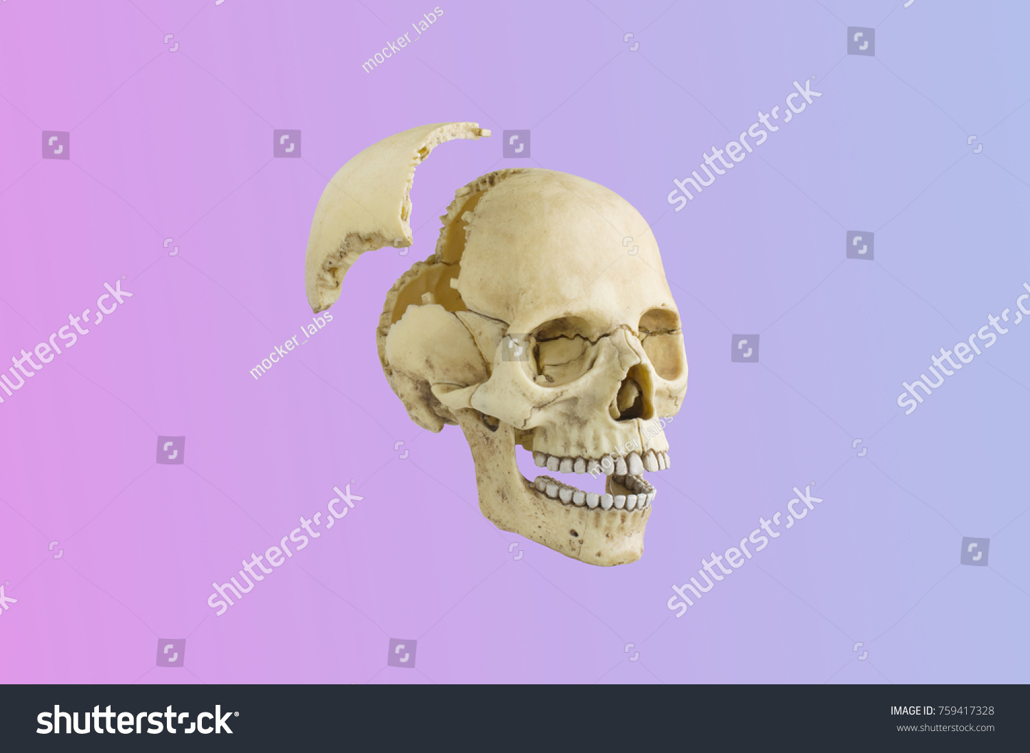 Puzzle Game Skull Stock Photo (Royalty Free) 759417328 - Shutterstock