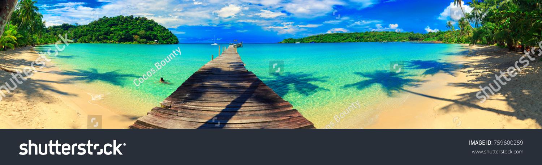 Panorama sandy tropical beach/ Palm and tropical beach