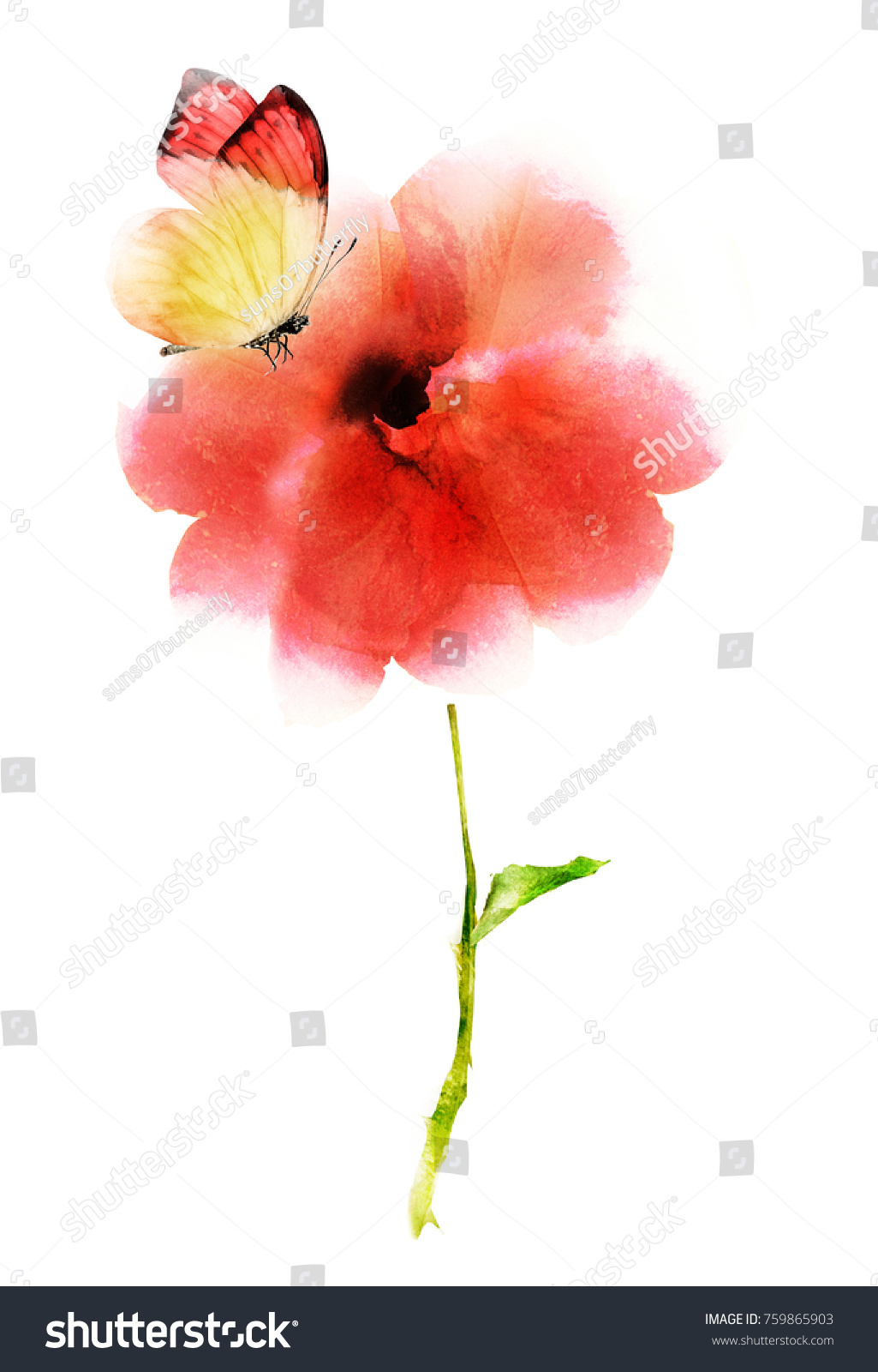 Watercolor flower on white | EZ Canvas