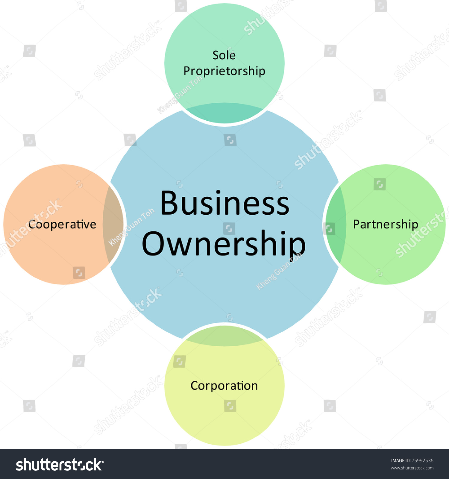 business ownership diagram management strategy concept stock business ownership diagram management strategy concept chart illustration