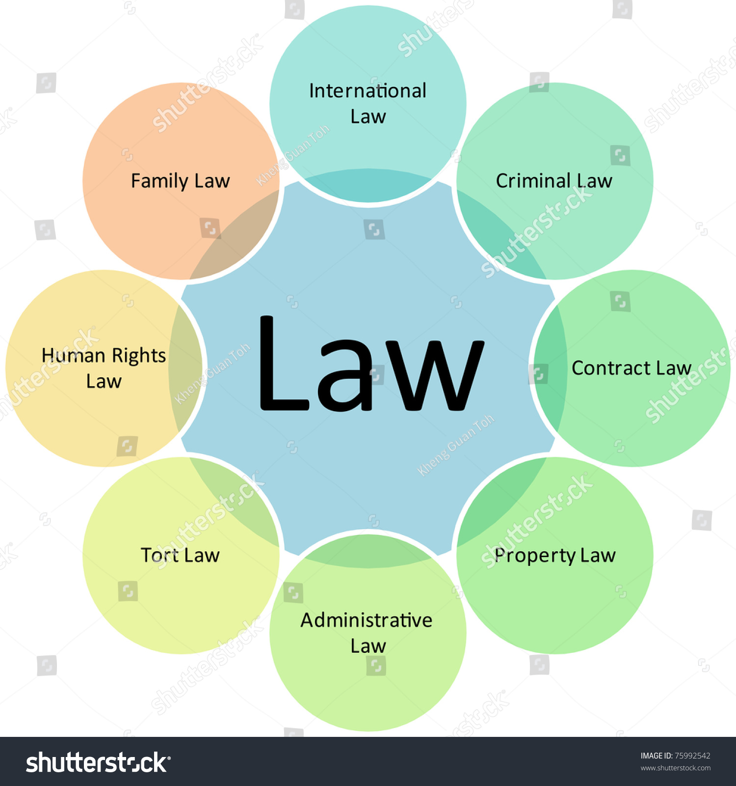 law practices business diagram management strategy concept chart    save to a lightbox