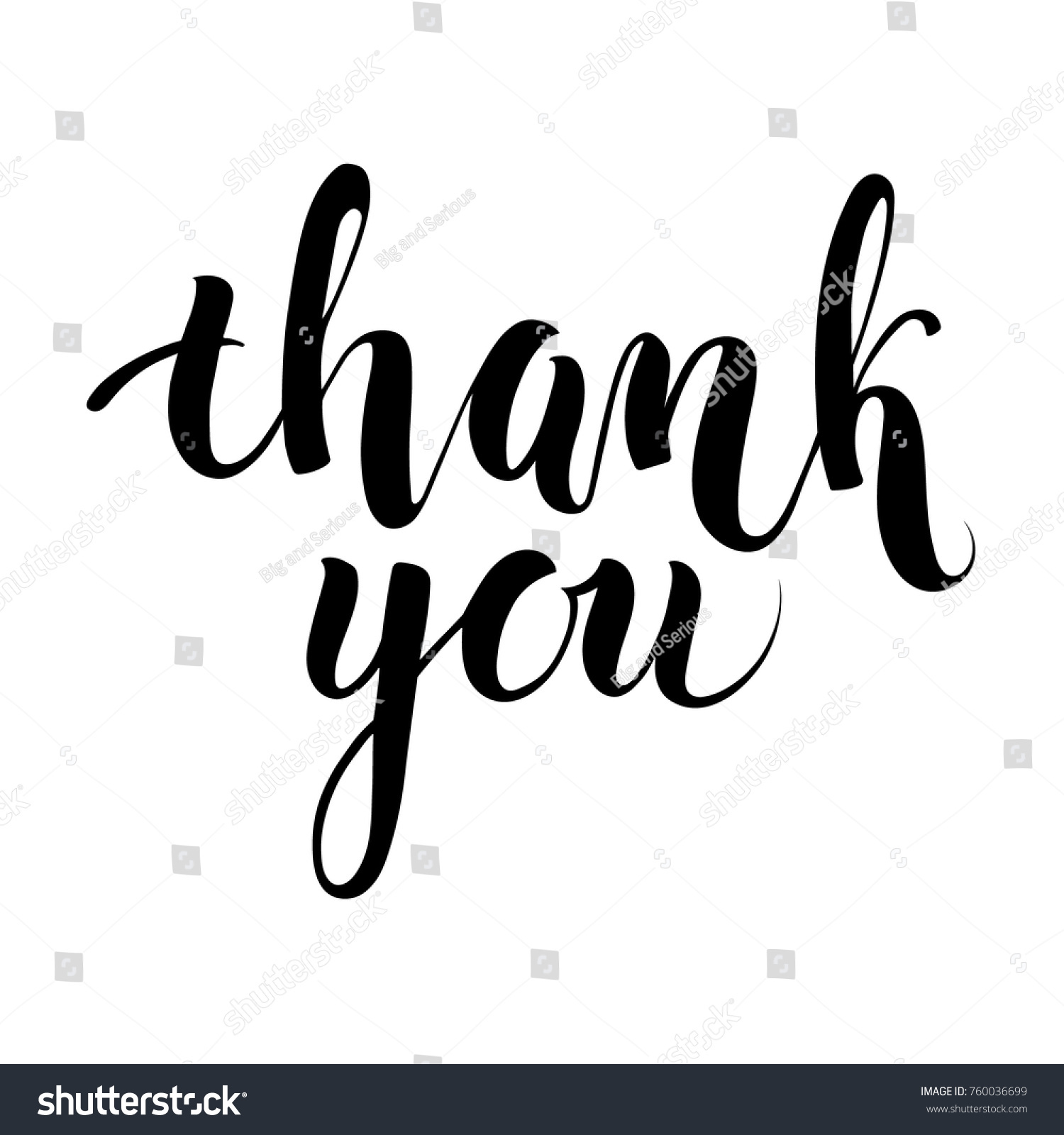 hand written thank you words brush stock vector royalty free