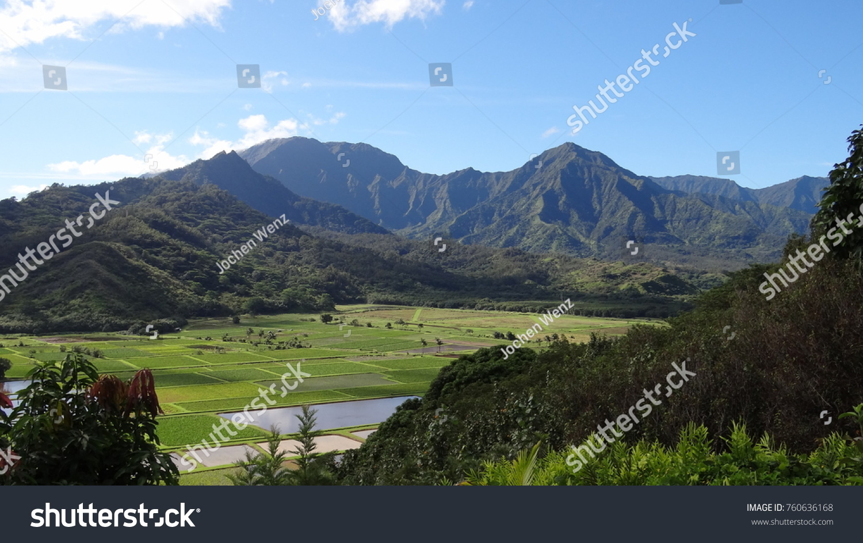 Hawaii Garteninsel Kauai Hawaiian Islands Stock Photo (Royalty Free ...