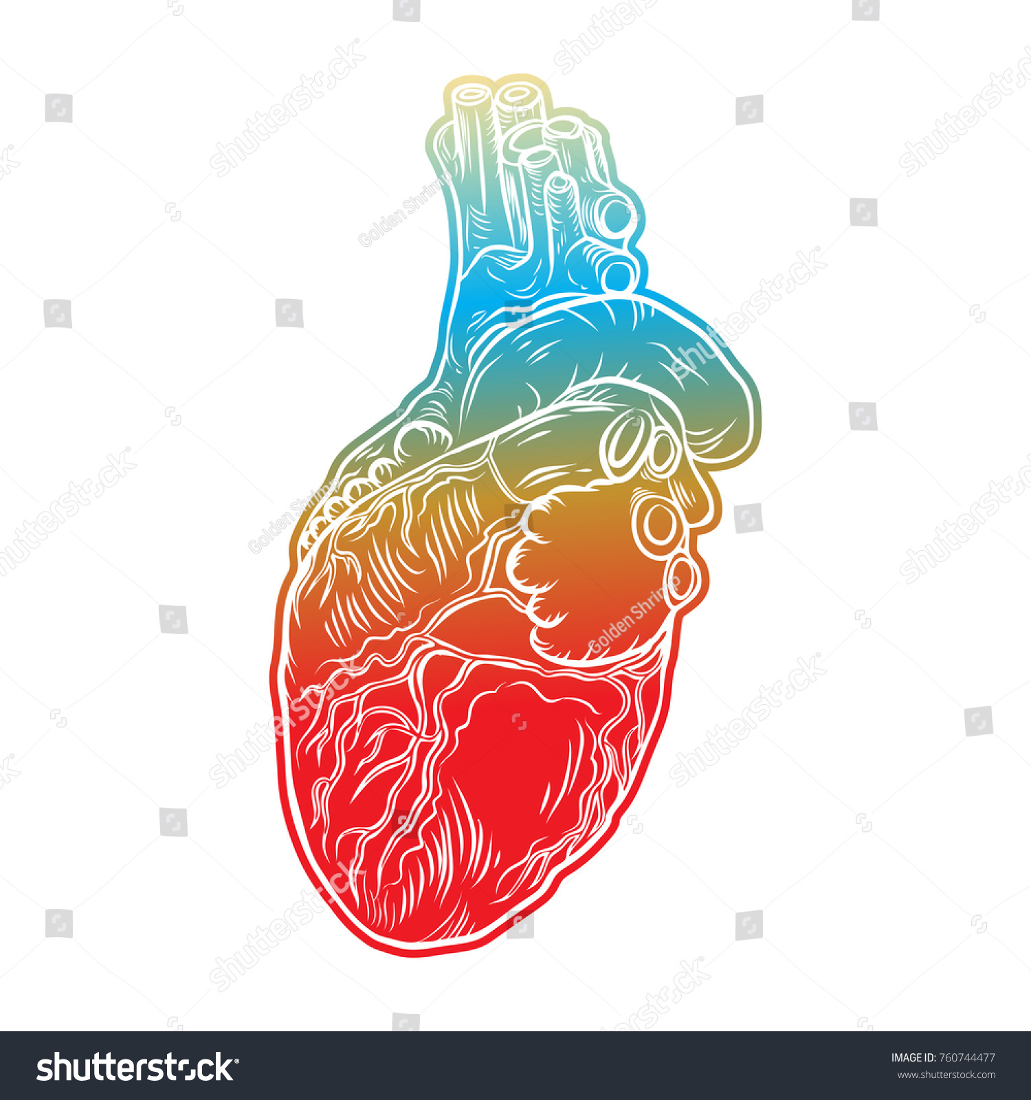 Human Heart Hand Drawn Flesh Tattoo Stock Vector 760744477 ...