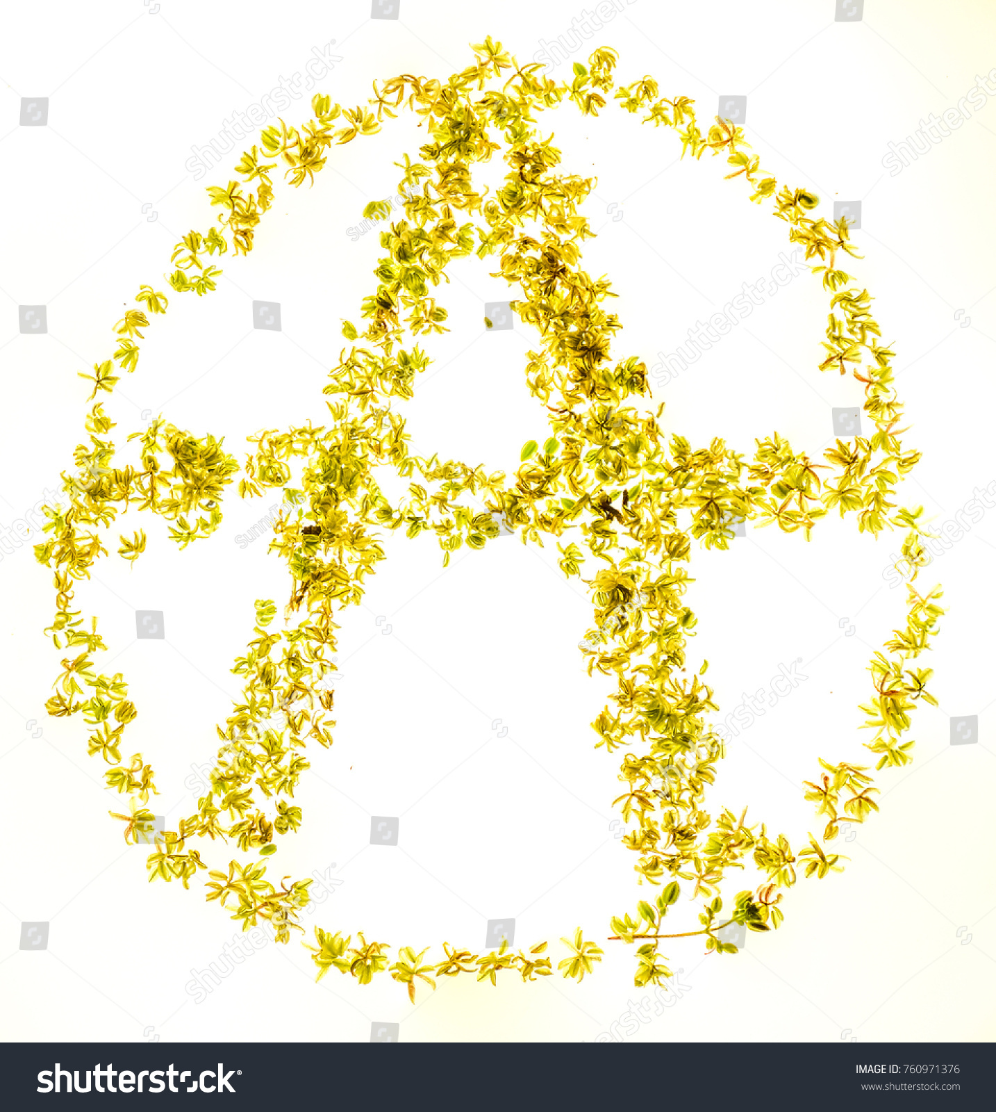 Small fresh marijuana buds lay on stock photo 760971376 shutterstock small fresh marijuana buds lay on big letter a on circle as symbol of anarchy and buycottarizona