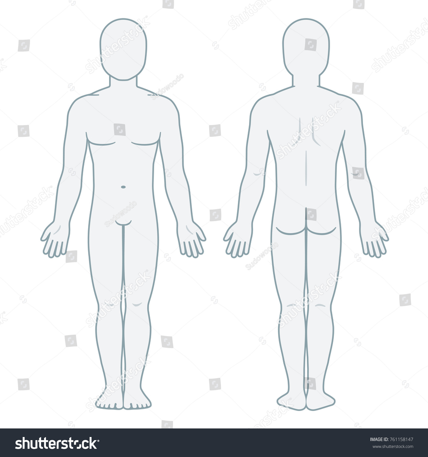 Nude male body front and back view. Blank man body template for ...