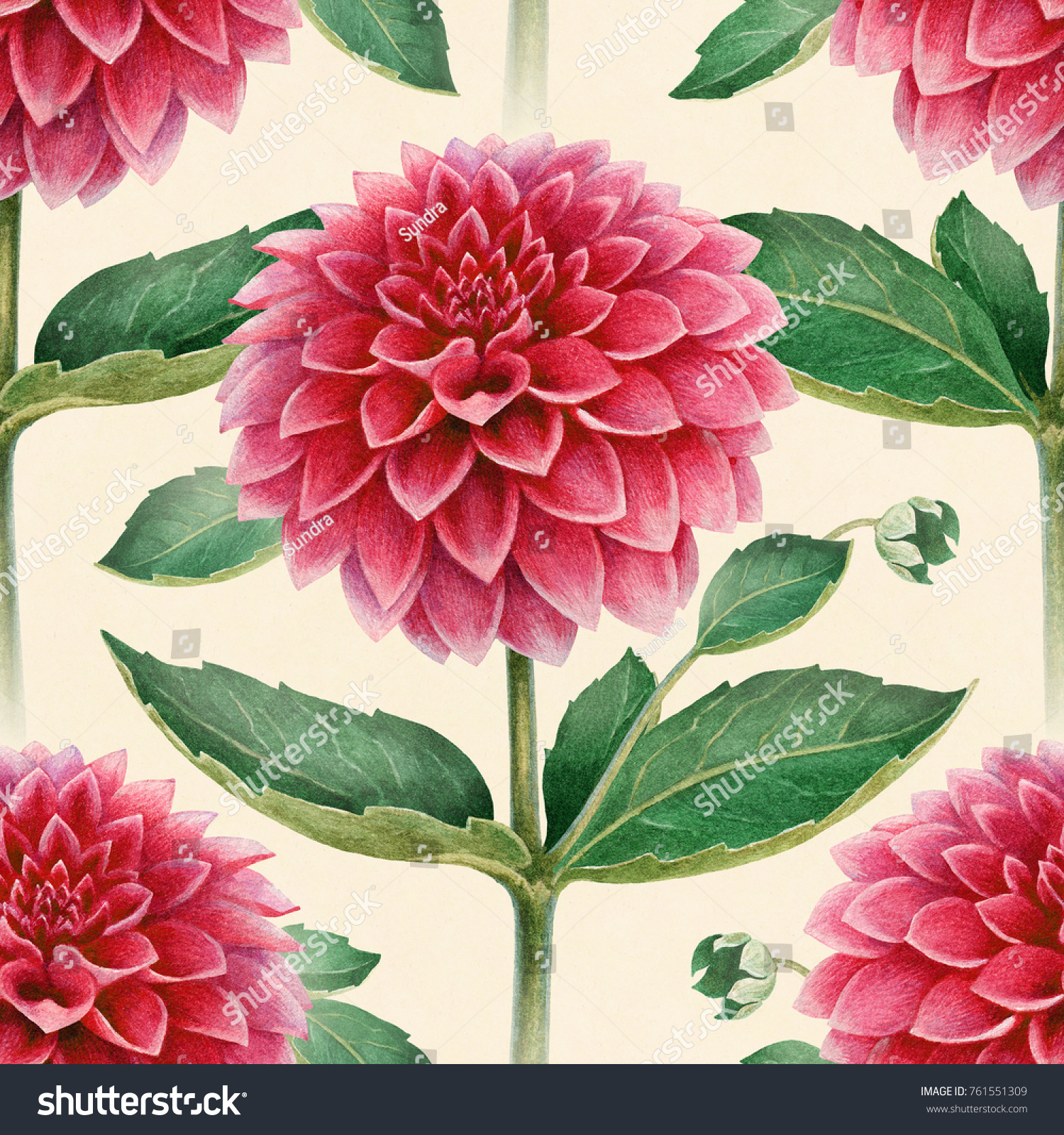 Watercolor illustration dahlia flowers seamless pattern stock watercolor illustration of dahlia flowers seamless pattern izmirmasajfo