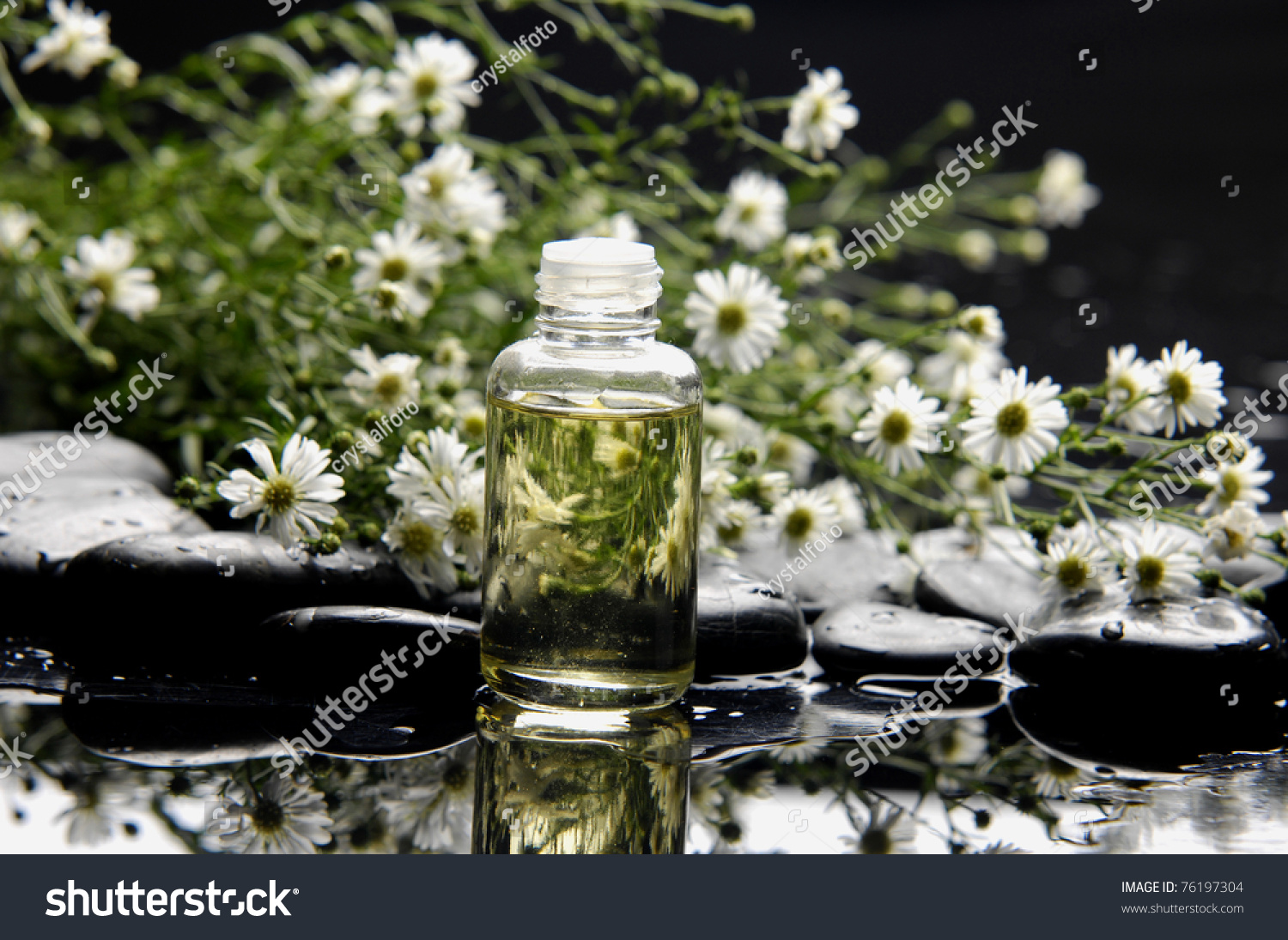 White flower analgesic oil image collections flower decoration ideas white flower analgesic oil choice image flower decoration ideas old fashioned chinese white flower oil picture mightylinksfo