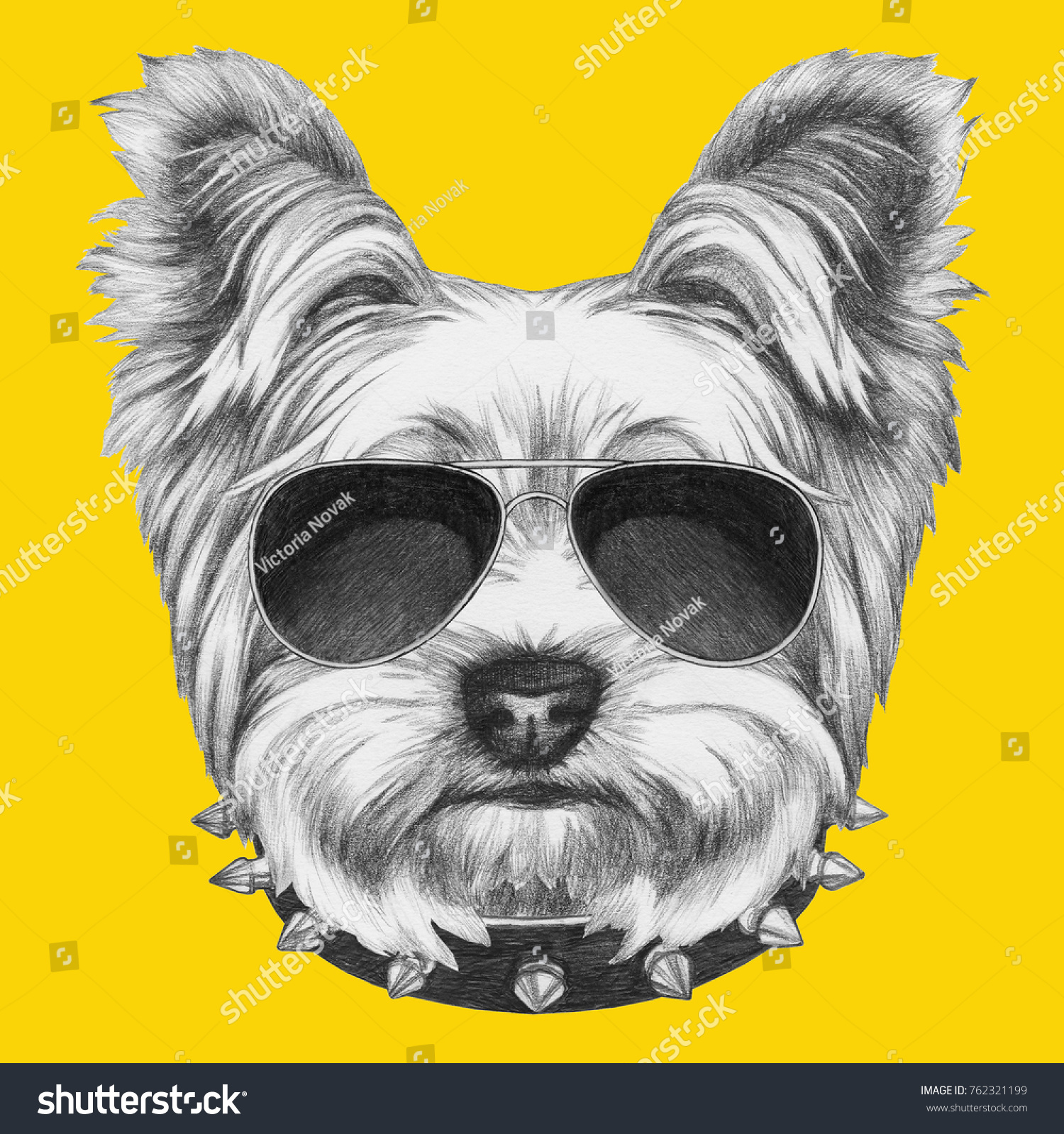 Portrait Of Yorkshire Terrier With Sunglasses And Collar Hand Drawn