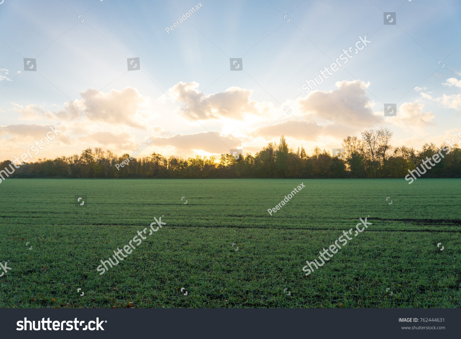 morning scenery silhouette farm nature fog stock photo (royalty free