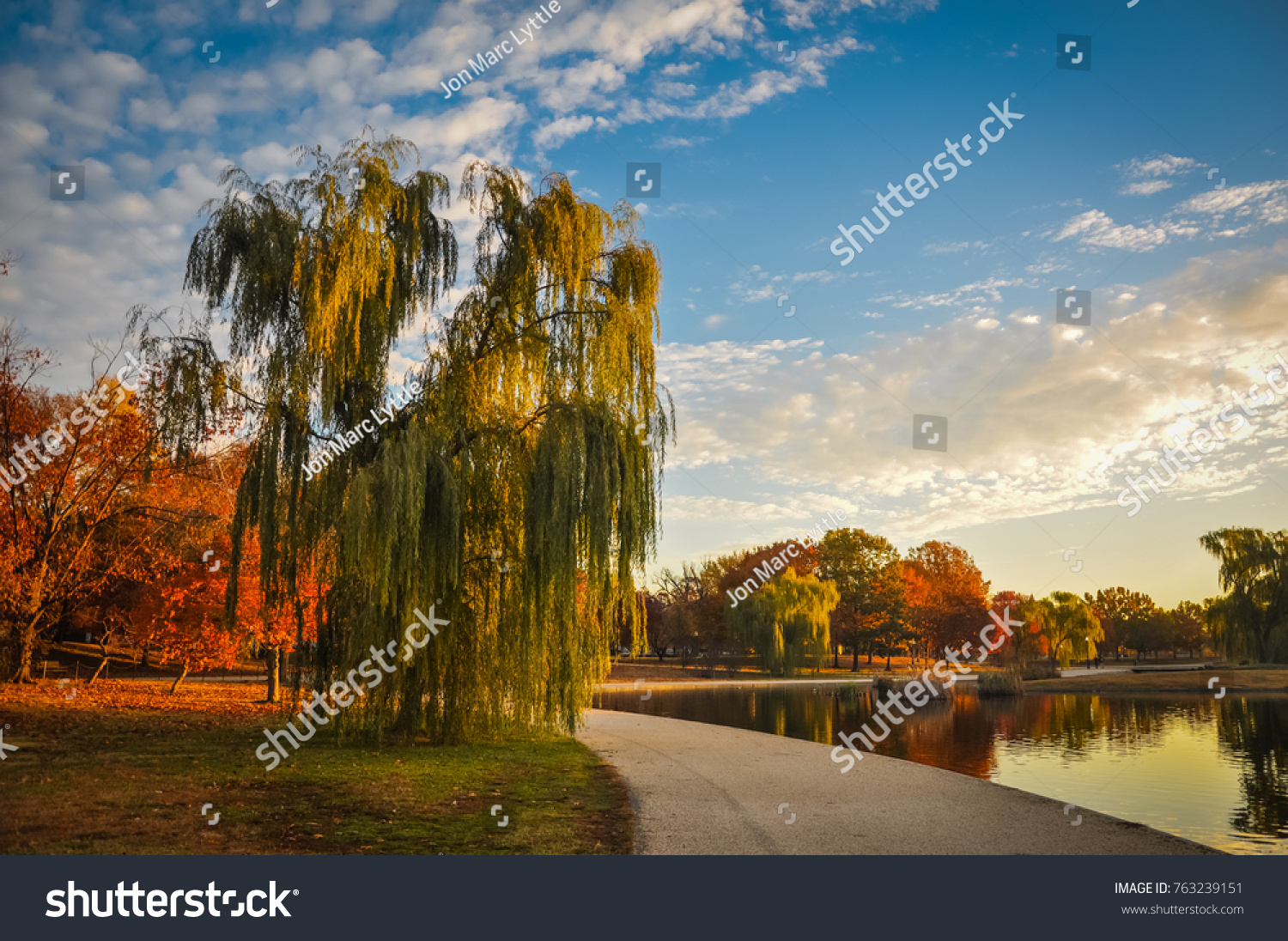 Weeping Willow By Constitution Gardens Pond Stock Photo (Royalty ...