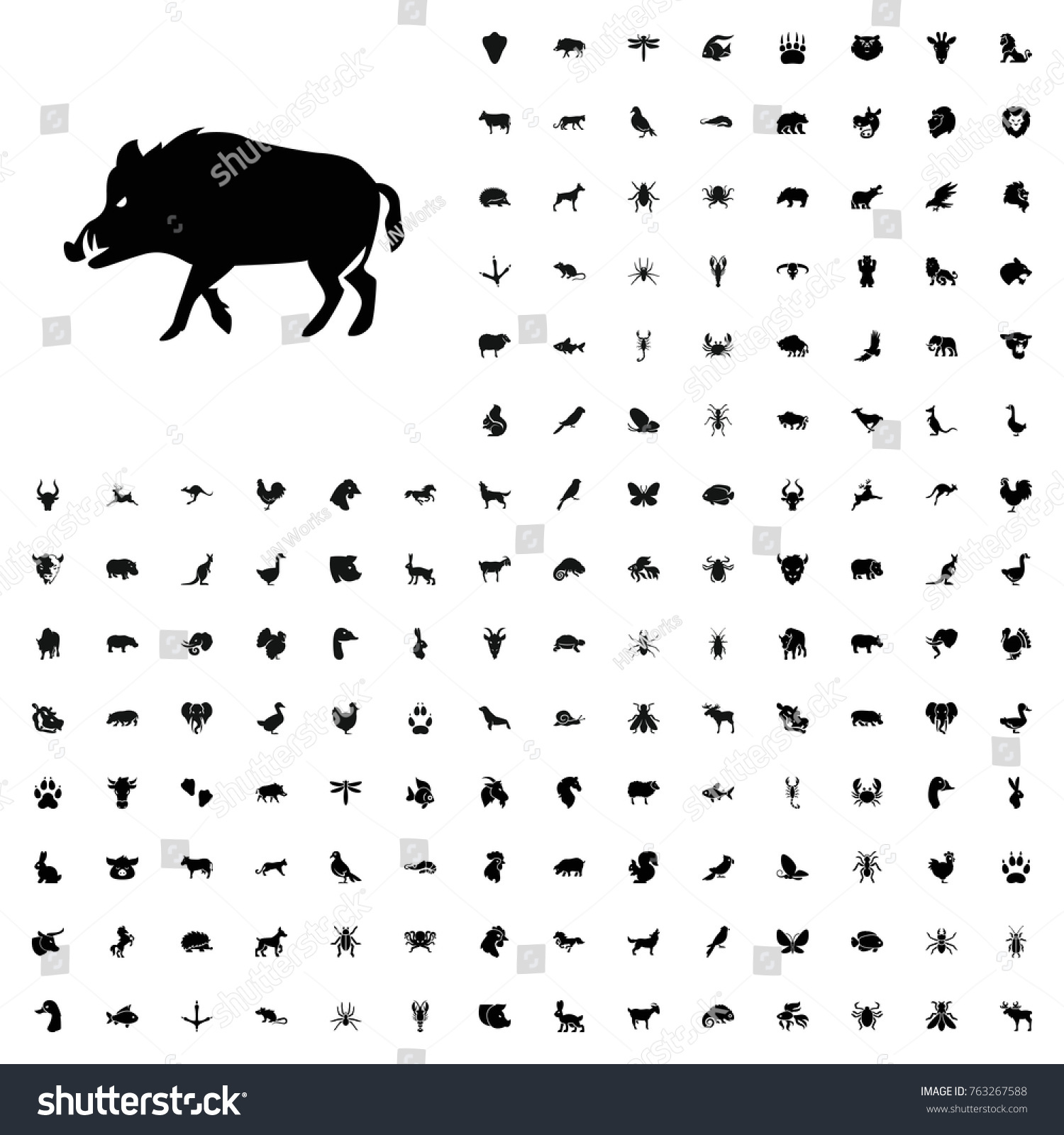 Hog icon illustration isolated vector sign stock vector 763267588 hog icon illustration isolated vector sign symbol animals icon set for web and mobile biocorpaavc