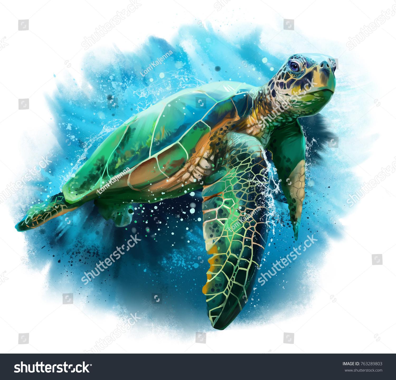 Buyuk Deniz Kaplumbagasi Suluboya Boyama Stok Illustrasyon 763289803