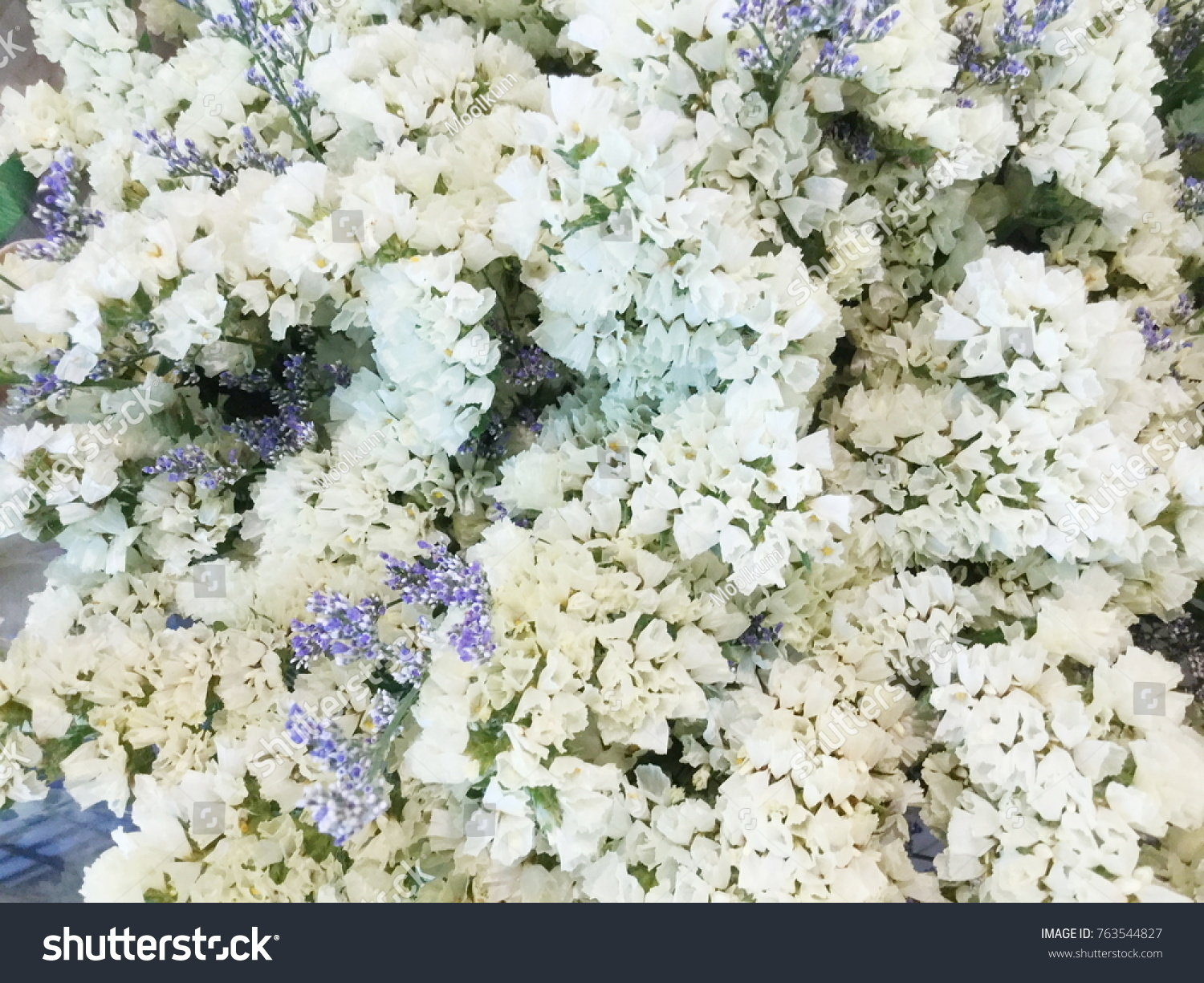 Brown And White Dried Wild Flowers In Buckets Dry Flower Vintage