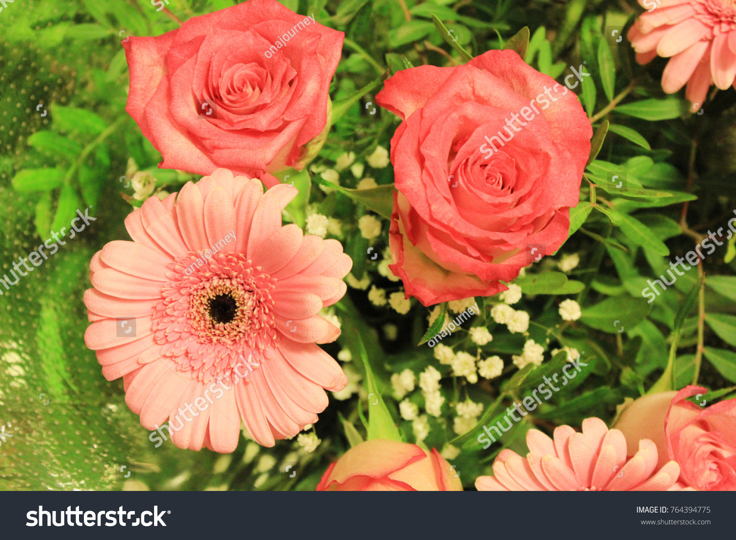 Bouquet gerbera daisy flowers roses white stock photo edit now bouquet of gerbera daisy flowers and roses of white red and pink color assorted mix izmirmasajfo