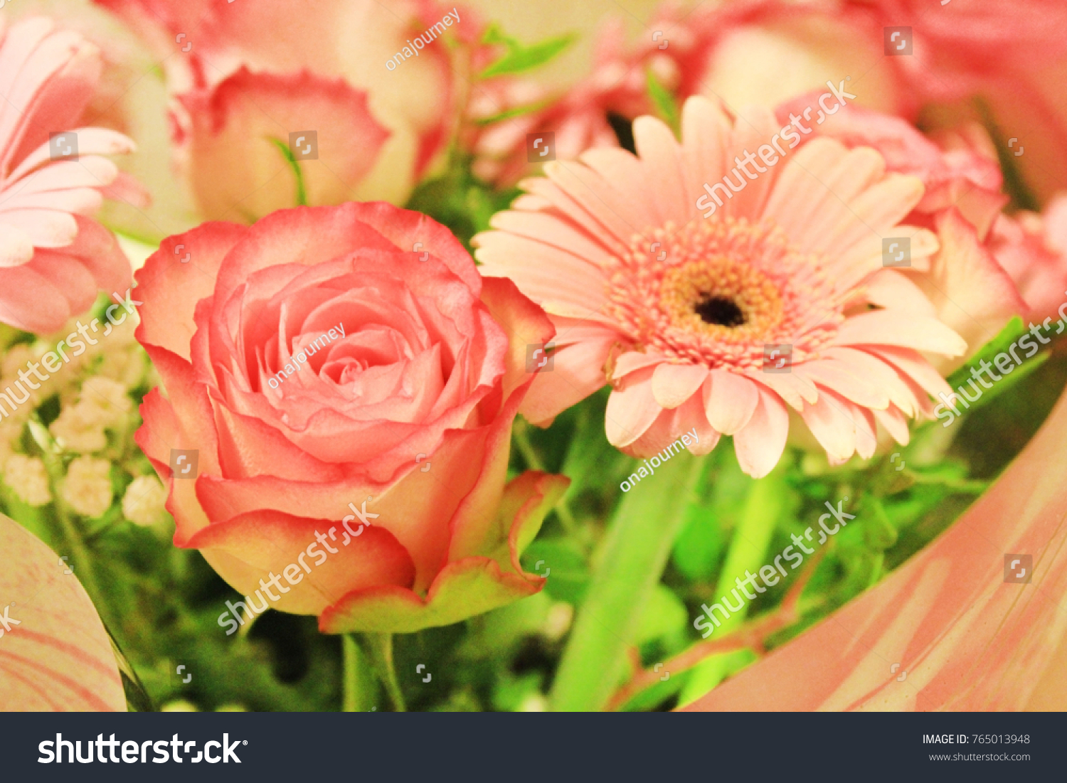 Pink Rose Gerbera Daisy Flower Bouquet Stock Photo (Royalty Free ...