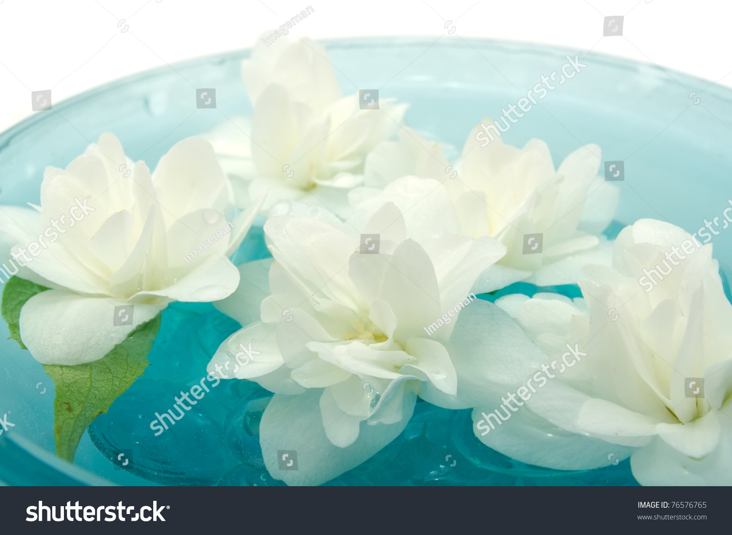 Jasmine flowers floating on water stock photo 76576765 for Floating flowers in water