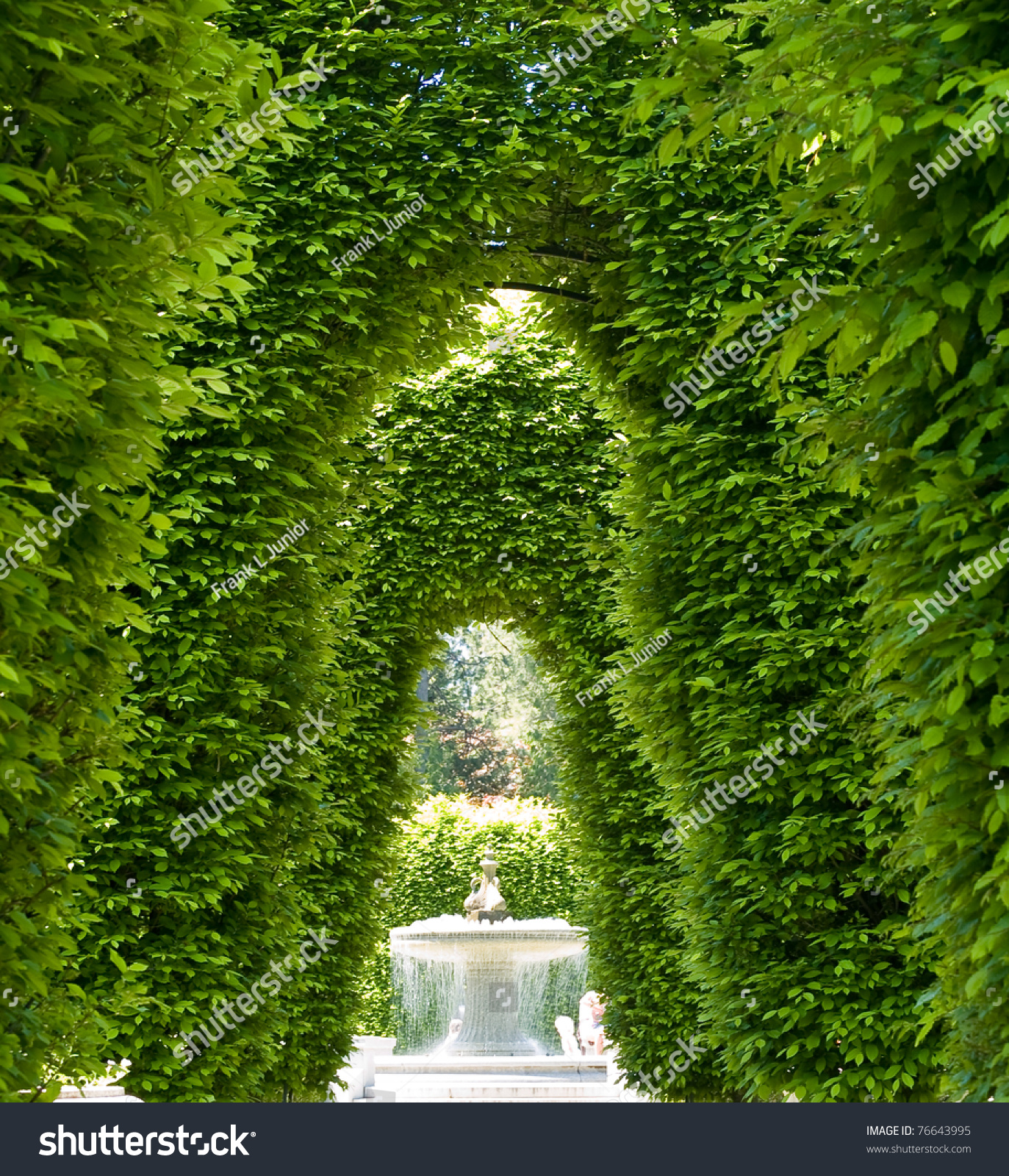 Outdoor Park Archways Over A Paved Path On A Sunny Day ...