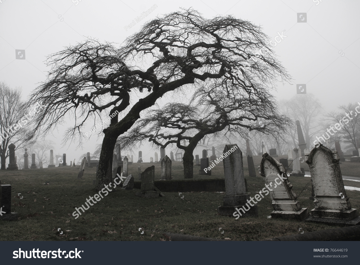Spooky Graveyard Scene Complete Scary Trees Stock Photo
