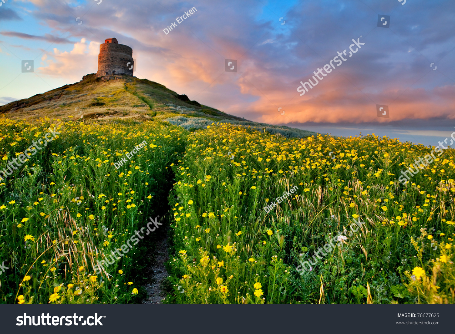 Spring Flower Field Trail Castle Tower Stock Photo Royalty Free