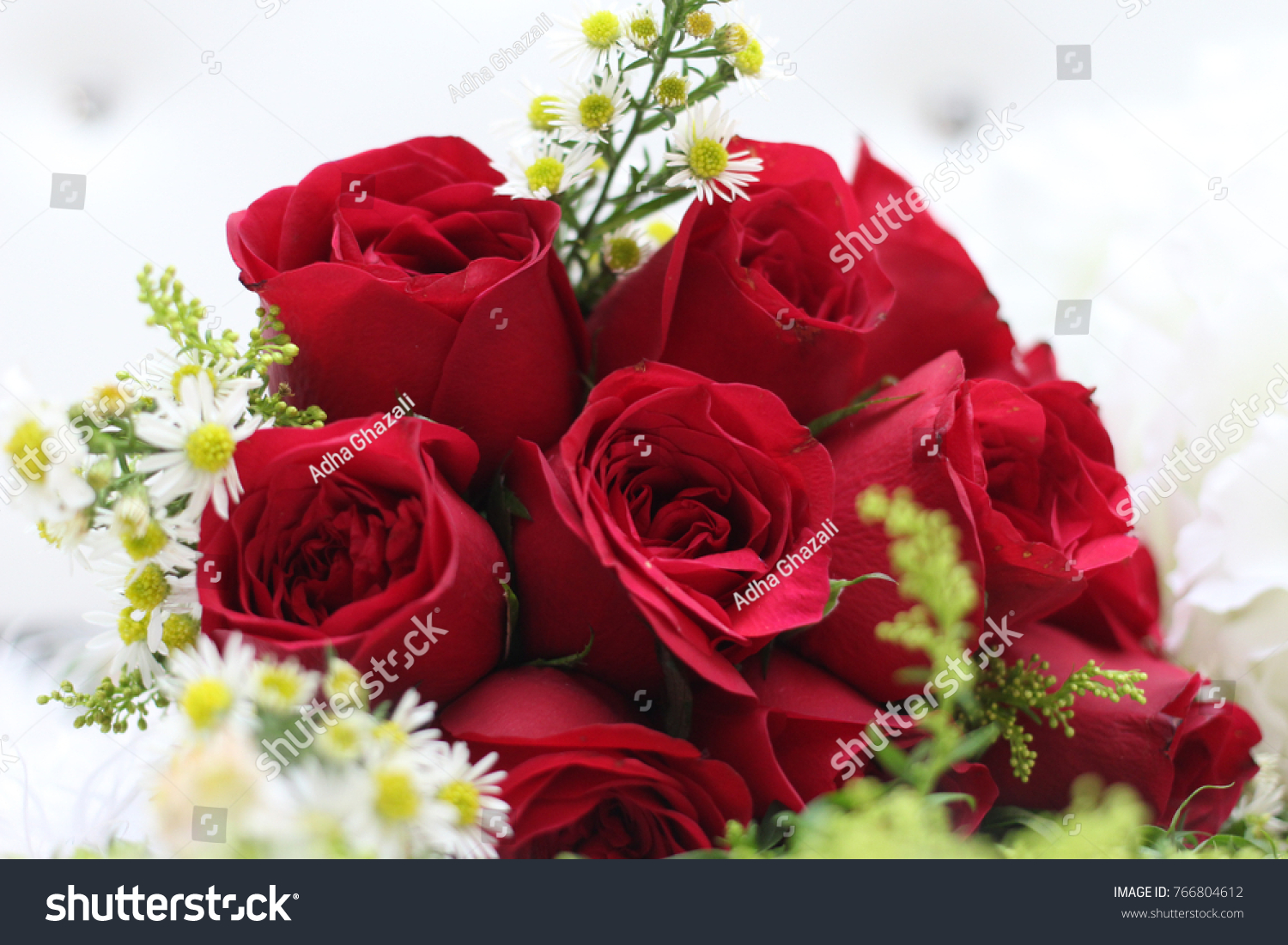 Red Rose Flowers On White Carpet Stock Photo Royalty Free