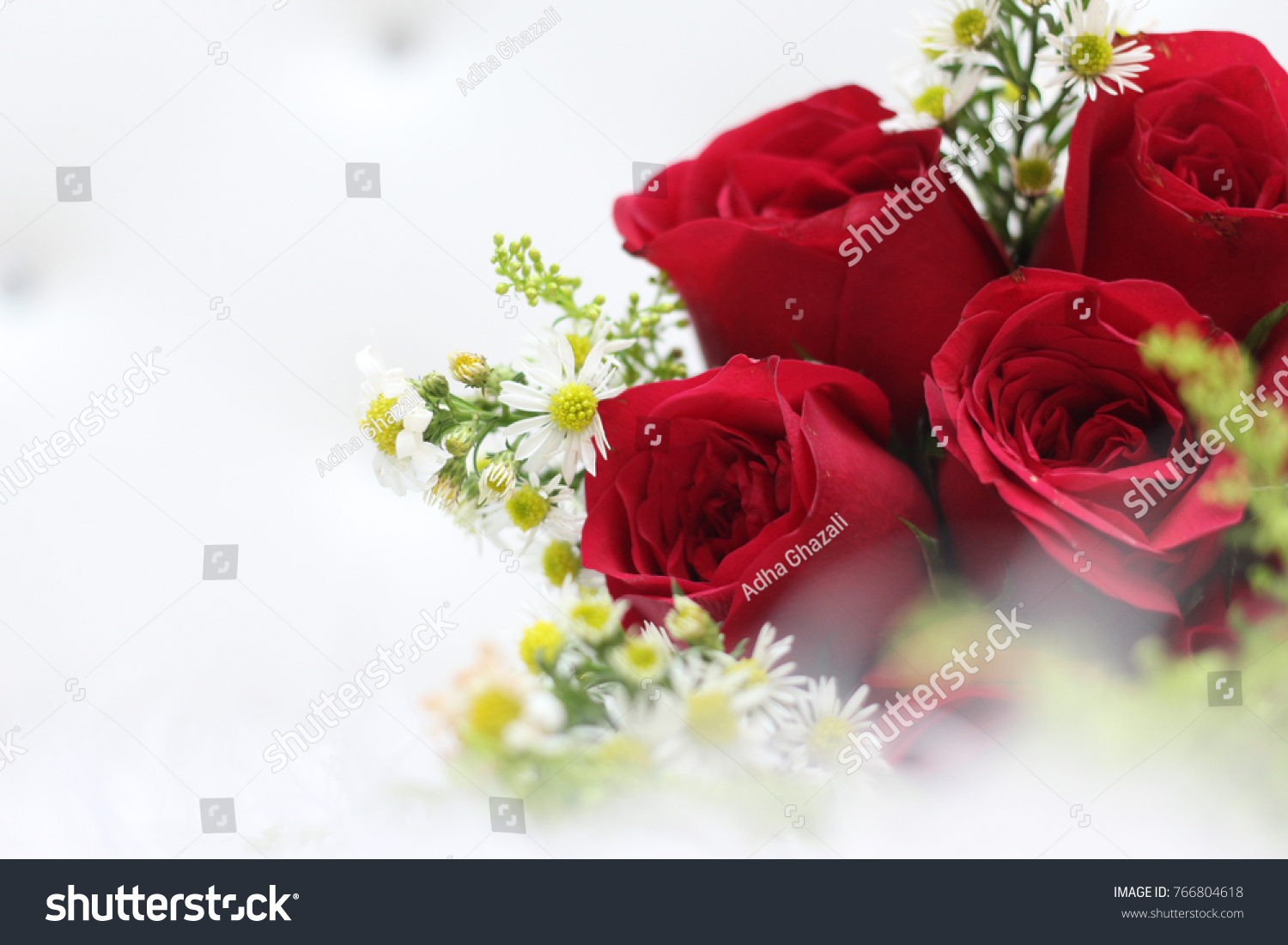 Red Rose Flowers On White Carpet As Background Copy Space Ez Canvas