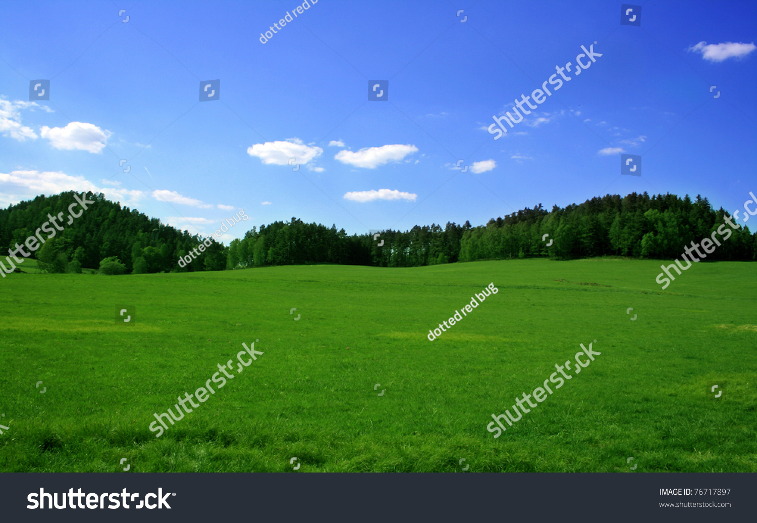 Green Grass Blue Sky Trees | www.imgkid.com - The Image ...
