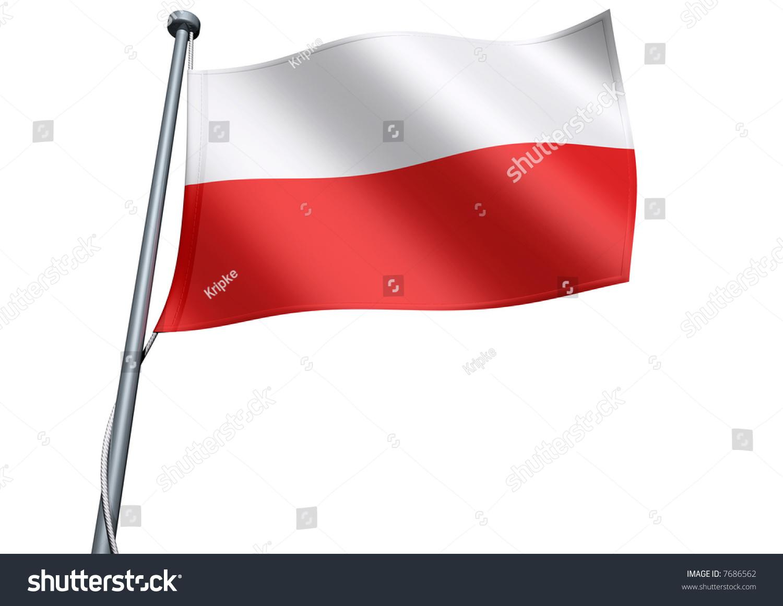 poland flag stock illustration 7686562 shutterstock