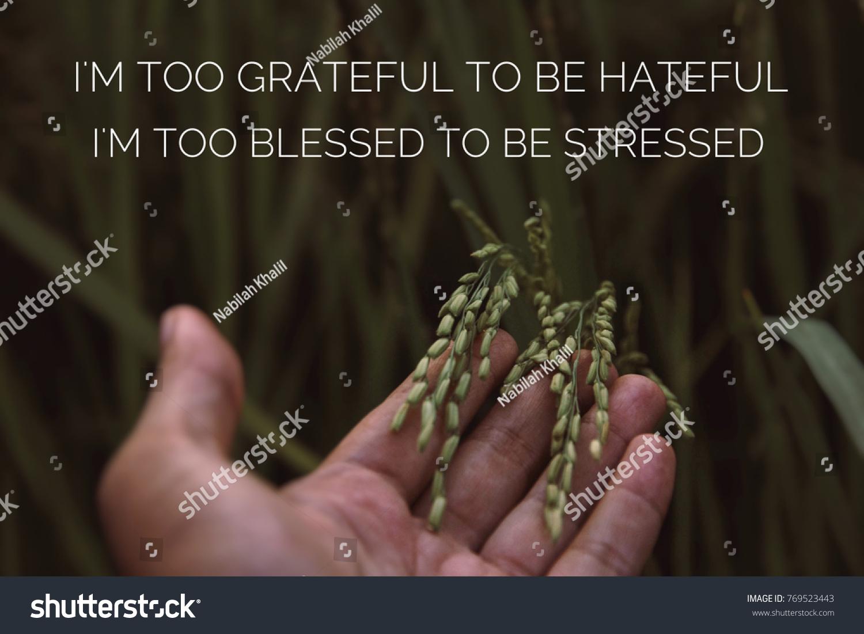 motivational quotes im grateful be hateful stock photo edit now