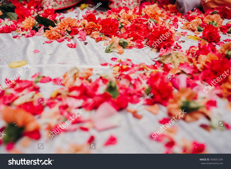 Pink Orange Flowers Lie Before Feet Stock Photo Royalty Free