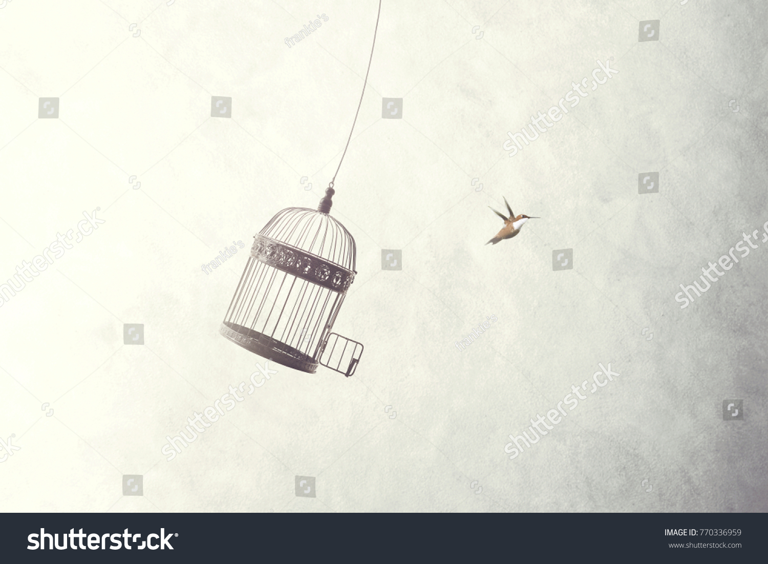 little birds escape out of birdcage, freedom concept #770336959