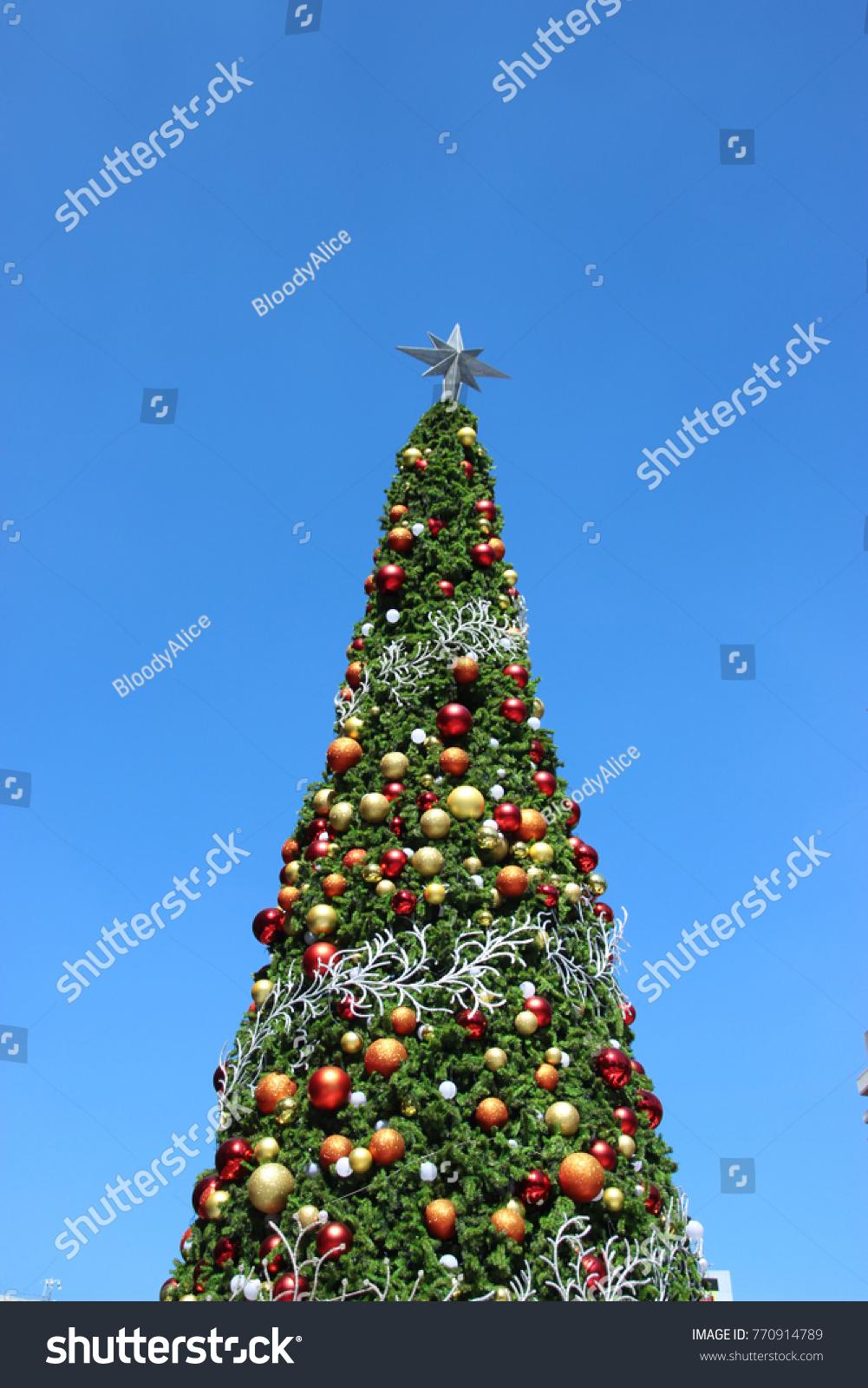 Bloody Christmas Tree.Green Pine Christmas Tree Light Sparkle Stock Photo Edit