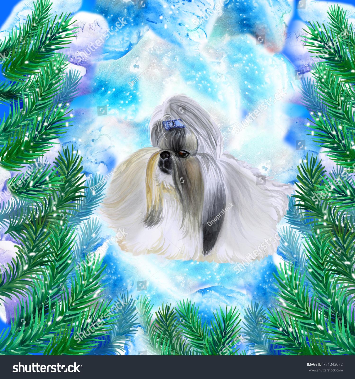 Shih Tzu Symbol New Year Christmas Stock Illustration 771043072 ...
